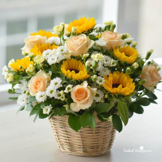 Những bó hoa 20/10 đẹp dễ thương tặng người yêu, bạn bè 2