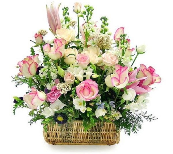 50 lãng hoa đẹp nhất tặng thầy cô giáo ngày 20/11 7