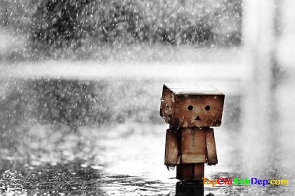 Hình ảnh buồn cô đơn của người gỗ ít được thấu hiểu
