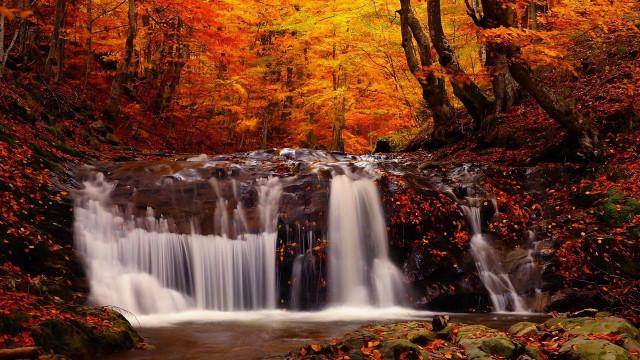 Hình ảnh đẹp thơ mộng lãng mạn về thiên nhiên 8