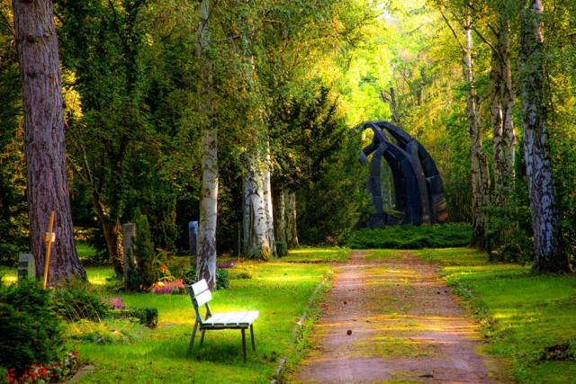 Hình ảnh đẹp về cảnh sắc thiên nhiên 1