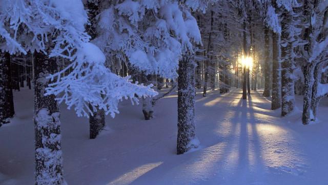 Hình ảnh đẹp về thiên nhiên bốn mùa 21