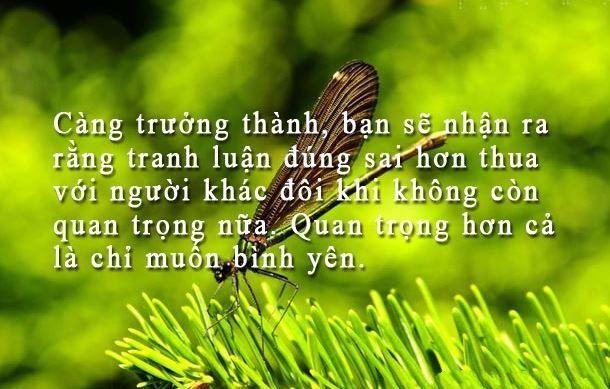 Những câu danh ngôn cuộc sống vô cùng hữu ích với bạn 2