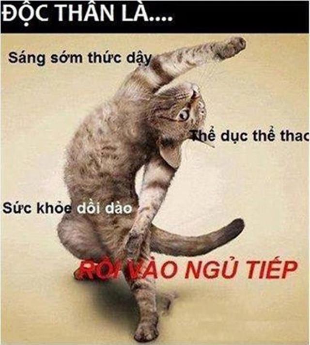 Nhung Hinh Anh Hai Huoc Vui Nhon Nhat Viet Nam 28