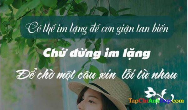 Stt Xin Loi Nguoi Yeu