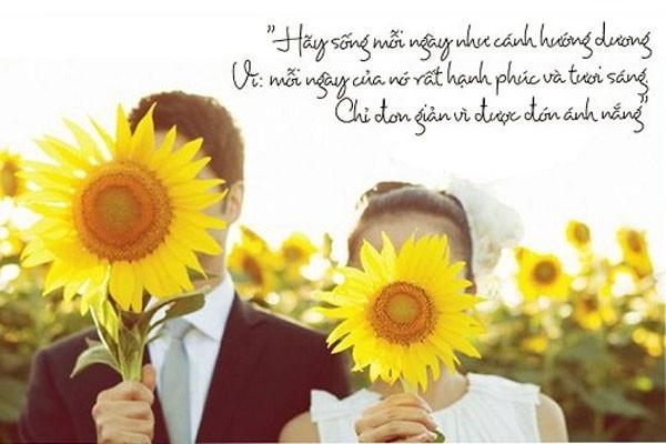 1001 câu nói hay về cuộc sống tươi đẹp mà bạn đã từng bỏ lỡ