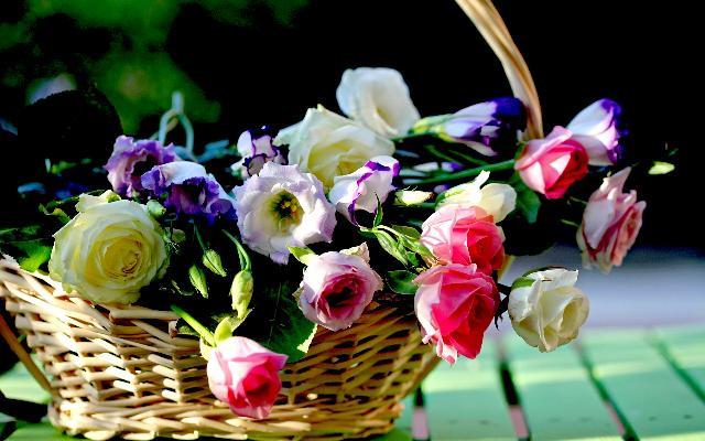 35 Hình ảnh bó hoa hồng đẹp nhất 8/3 mà bất kỳ cô gái nào cũng thích