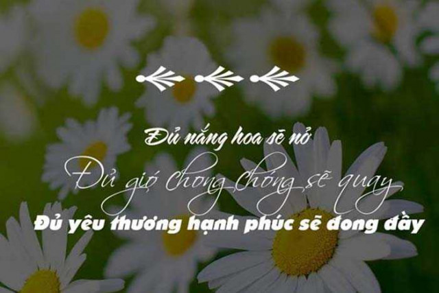 Nhung Cau Stt Hay Ve Cuoc Song 1