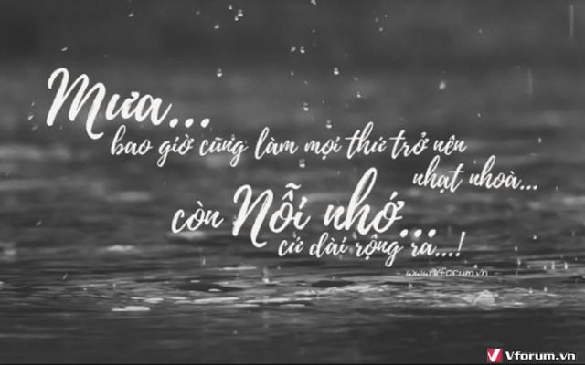 Những câu stt tâm trạng về mưa buồn đau khổ nhất mà tôi từng đọc