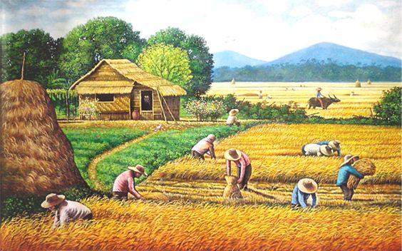 Tranh phong cảnh đồng quê lúa vàng